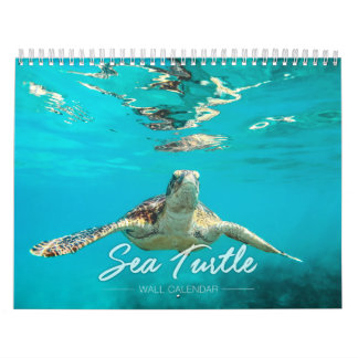 Sea Turtle 2019 Wall Calendar