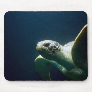 Sea Turtle 2 Mouse Pad