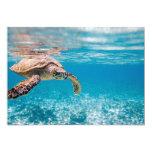 Sea turtle 5x7 paper invitation card