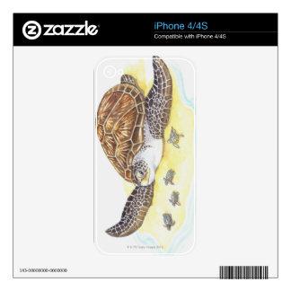 Sea Turtle and Babies iPhone 4 Skins