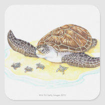 Sea Turtle and Babies Square Sticker