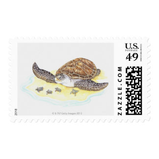 Sea Turtle and Babies Stamp