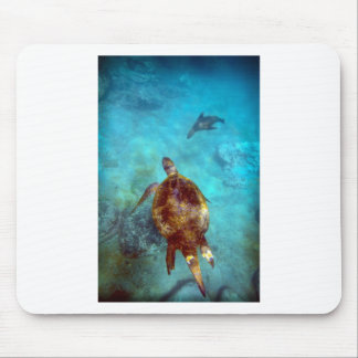 Sea turtle and sea lion underwater Galapagos Mouse Pad