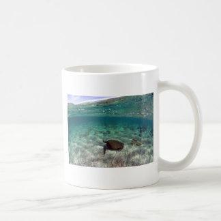 Sea turtle beautiful lagoon Galapagos Islands Coffee Mug