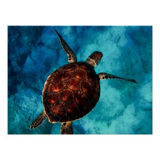 Sea Turtle Beauty Poster