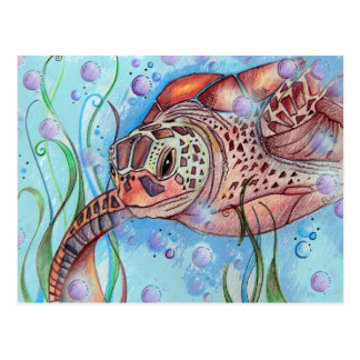 Sea Turtle Buble Design Postcard