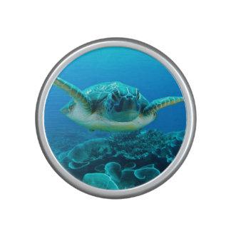 Sea Turtle Bumpster Speaker