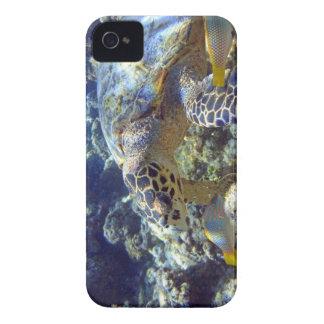 SEA TURTLE Case-Mate iPhone 4 CASE