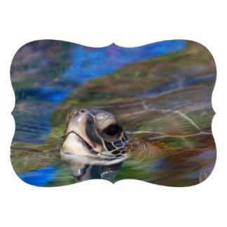 Sea Turtle Custom Announcement