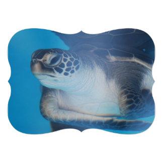 Sea Turtle Custom Announcements