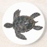 Sea Turtle Drink Coasters