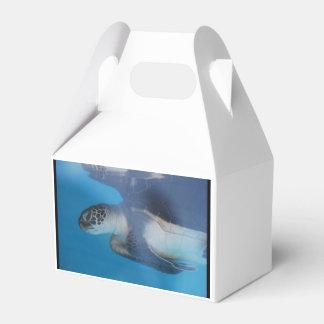Sea Turtle Favor Box