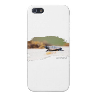 Sea Turtle Hatchling iPhone 5 Case