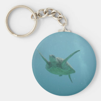 Sea Turtle in Natural Habitat Keychain