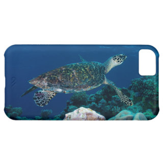 Sea Turtle iPhone 5C case