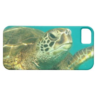 Sea Turtle iPhone case iPhone 5 Covers