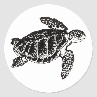 Sea Turtle (Kemp's Ridley) Classic Round Sticker