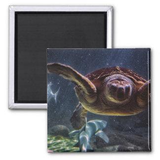 Sea Turtle Refrigerator Magnet