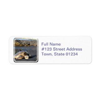 Sea Turtle Mailing Label