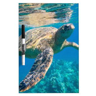 Sea Turtle, Marine Turtle, Chelonioidea, reptile Dry Erase Board