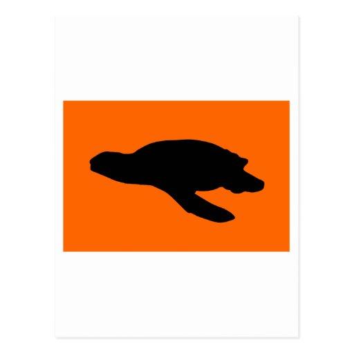 Sea Turtle Nesting Flag Post Cards