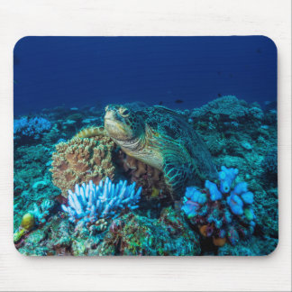 Sea Turtle on the Great Barrier Reef Mouse Pad