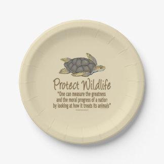 Sea Turtle Paper Plate