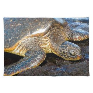 Sea Turtle Place Mats