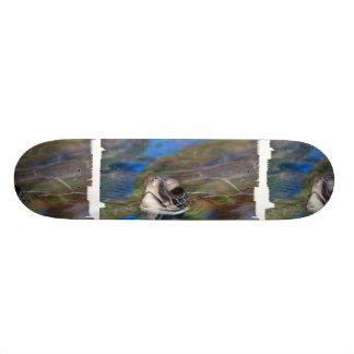 Sea Turtle Poking Head Up Skateboard