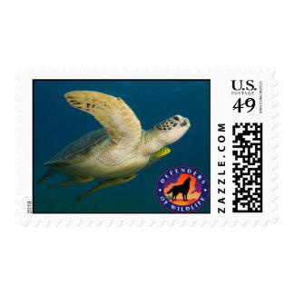 Sea Turtle Stamp