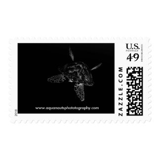 Sea Turtle Postage Stamps