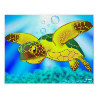 Sea Turtle Print 12b