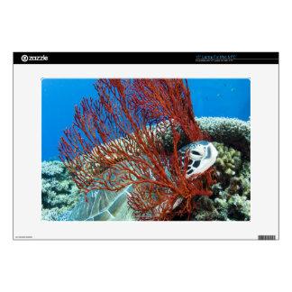 "Sea turtle resting underwater 2 decals for 15"" laptops"