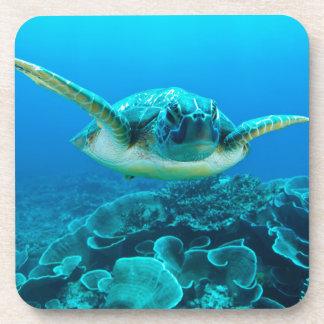 Sea Turtle Set of 6 Coasters