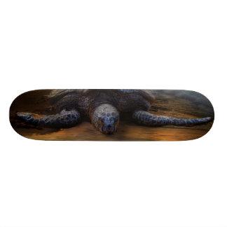 Sea Turtle Skateboard