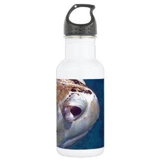 sea turtle stainless steel water bottle