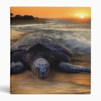 Sea Turtle Sunset Binder