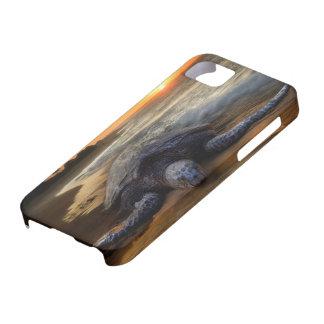 Sea Turtle Sunset iPhone 5 Cases