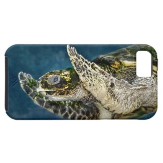 Sea Turtle Surprise iPhone 5 Cover