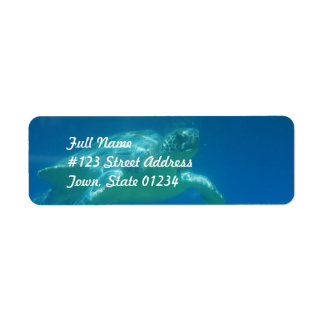 Sea Turtle Swim  Mailing Labels