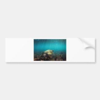Sea turtle swimming in green ocean underwater bumper stickers