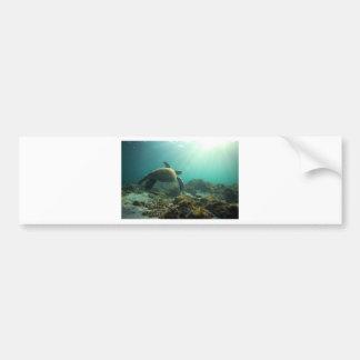 Sea turtle swimming underwater dreamy ocean bumper sticker