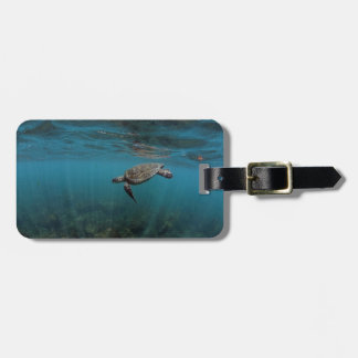 Sea turtle swimming underwater Galapagos Islands Bag Tag