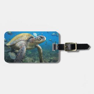 Sea turtle swimming underwater Galapagos paradise Travel Bag Tag