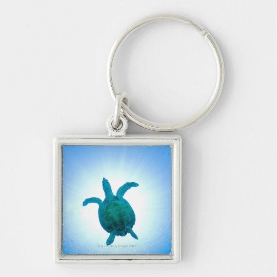 Sea turtle swimming underwater keychain