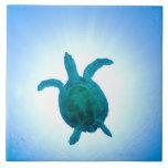 Sea turtle swimming underwater tiles