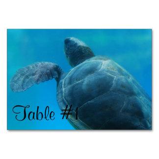 Sea Turtle Table Card