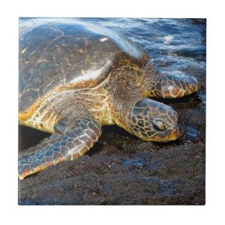 Sea Turtle Small Square Tile