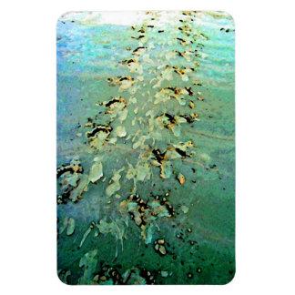 Sea Turtle Tracks Flexible Magnet