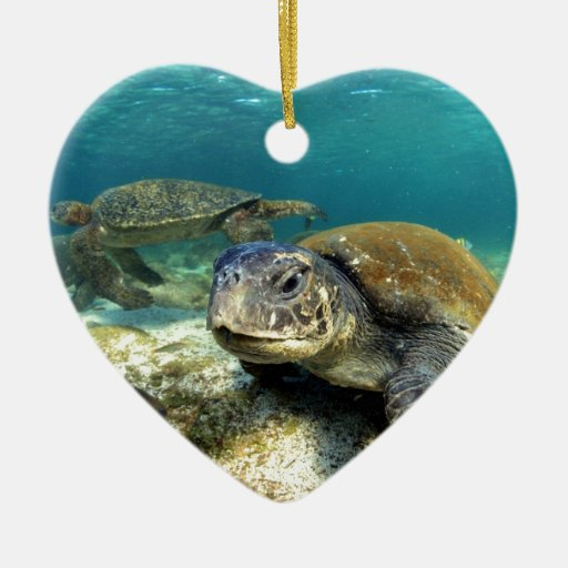 Sea turtle tranquility in underwater lagoon christmas tree ornaments